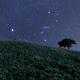 星の咲く丘で